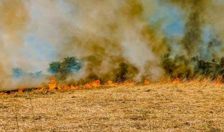 Rural fires - Law Changes